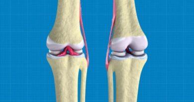 Scientists 3D-Bioprint Regenerative Knee Cartilage Tissue
